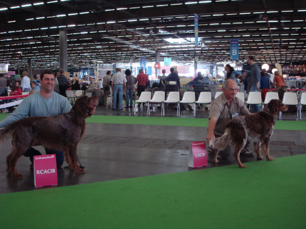 Paris world dog show 2012